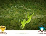 Prorrogação das inscrições para o Projeto Muriqui/Rio